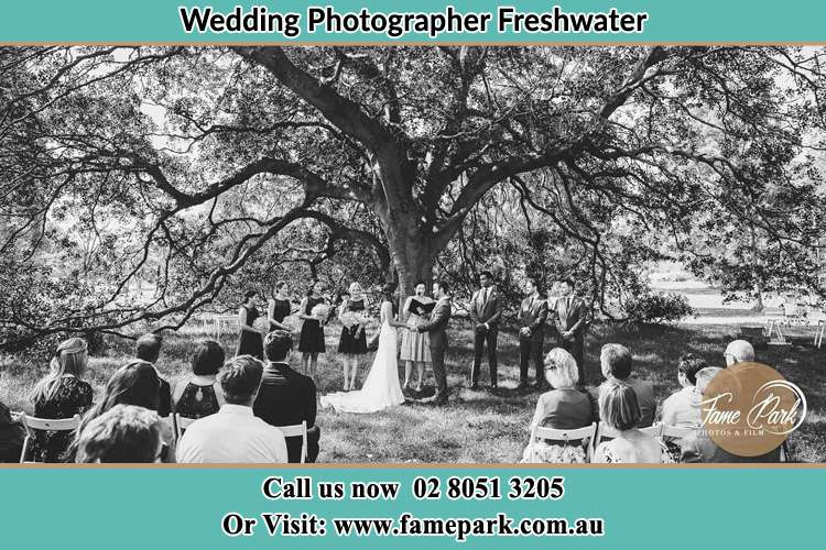 Wedding ceremony under the big tree photo Freshwater NSW 2096