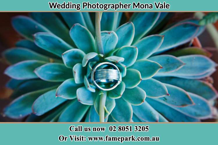 Photo of the wedding ring design at the top of the plant Mona Vale NSW 2103